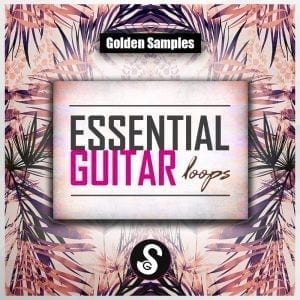 Essential Guitar Loops