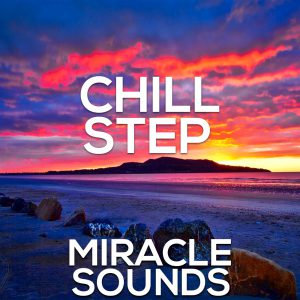 chillstep loops